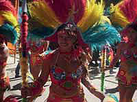 Caribbean Carnival Network Gains Support