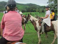 Dedicated to horse breeding and other activities; the Guabina Farm is an attractive destination for those who enjoy adventure, nature and agritourism recreational activities.