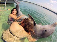 Swimming with dolphins is a new choice visitors can now enjoy in Varadero, Cuba's largest beach resort, specifically in waters near Key Blanco, an extension of the Hicacos Peninsula.