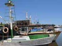 Dutch Support for Aquaculture Development in Cuba